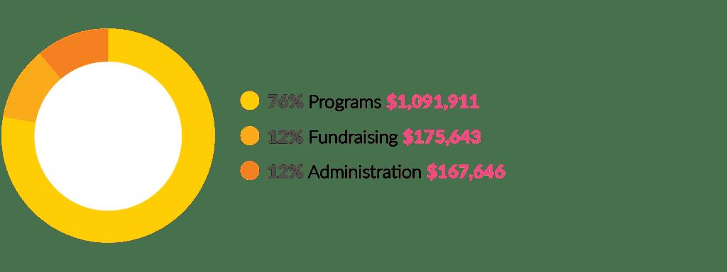 2018 expense pie chart